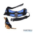 GoPro SJCAM kutyahám egy kameraállással (kutyás akció kamera rögzítő tartó kutya hám) - kék SJ/GP-204 SJ GP-204