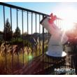 Meade LightBridge Mini 114 mm-es teleszkóp - 71666