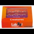 Levenhuk LabZZ C12 Élőlények – előkészített tárgylemez-készlet - 72868